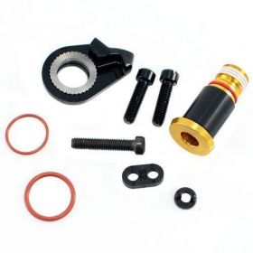 REAR DERAILLEUR B-BOLT AND LIMIT SCREW KIT XX1 EAGLE GOLD HEX5